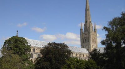 Norwich Cathedral from the lawns.
